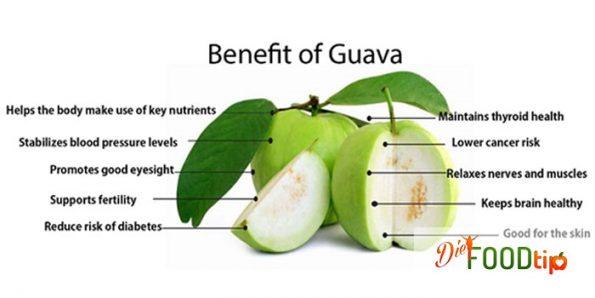 Guave Leaf